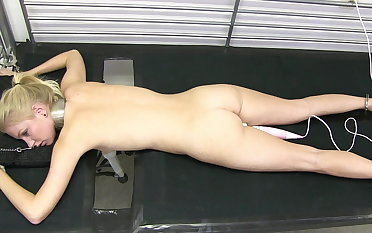 Arienh exposed to the milking bed